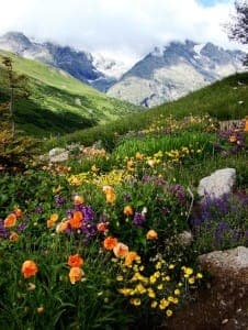 Mountain-Pass-Col-du-Lautaret-Alps-in-France