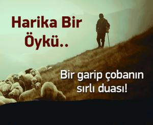 BİR GARİP ÇOBAN