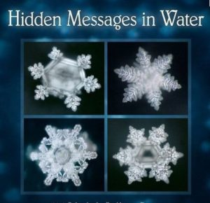 messages-in-water-dr-emoto